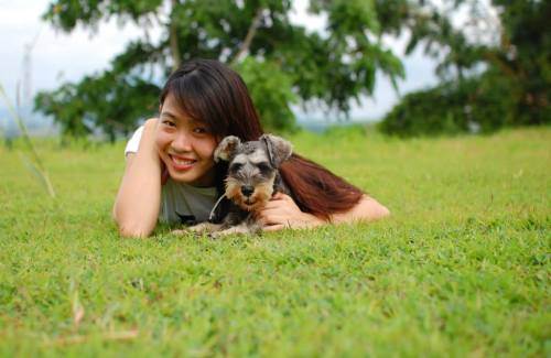 "sweet schnauzer SOYA, ""so good for the heart"""